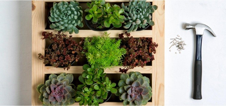 jardines verticales terraza suculentas madera