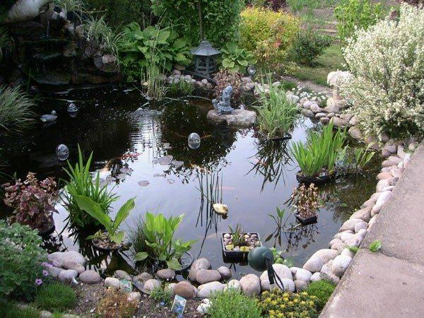 lago jardín esquina pequeño piedras