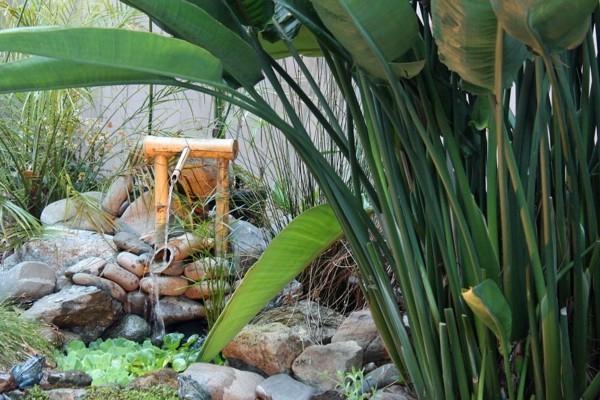 lago natuiral fuente caña original