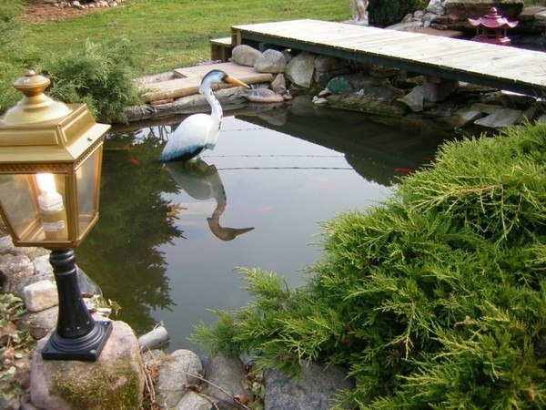 Lagos y piscinas naturales para el jard n for Como construir un lago para peces