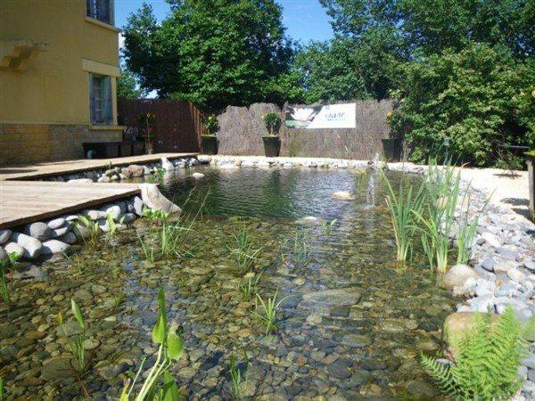lagos estanques piedras jardín fondo