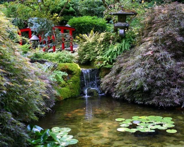 loto cascada puente bambu agua