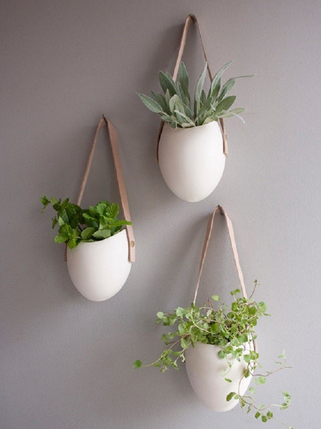 Ideas macetas y estanterias para interior for Plantas de interior para colgar