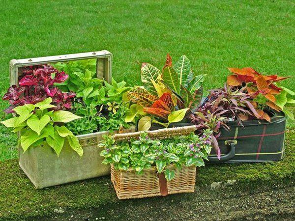 manualidades originales macetas diy plantas