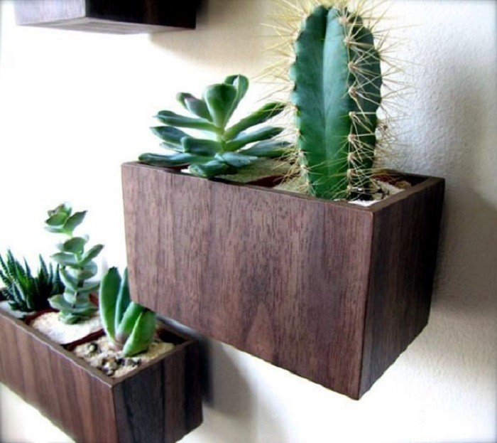 masetas-diseño-plantas-verdes-color-marron-pared