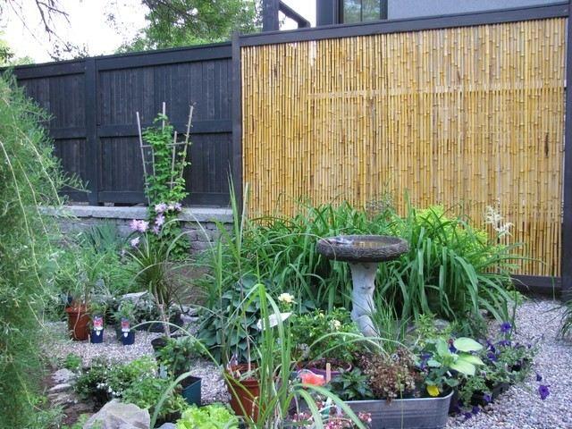 muro alto vaya madera patio xeriscape