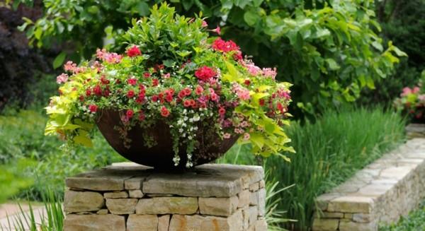 paisajismo bol flores colores adorno