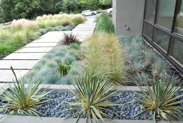 paisajismo con plantas de exterior grava sendero hierbas