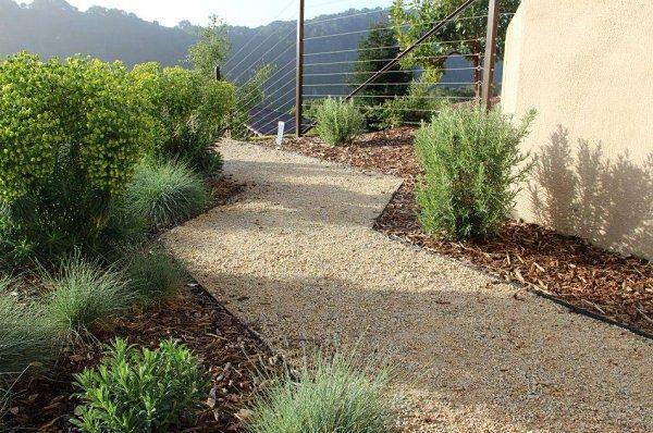 paisajismo con plantas de exterior mantillo diseño moderno