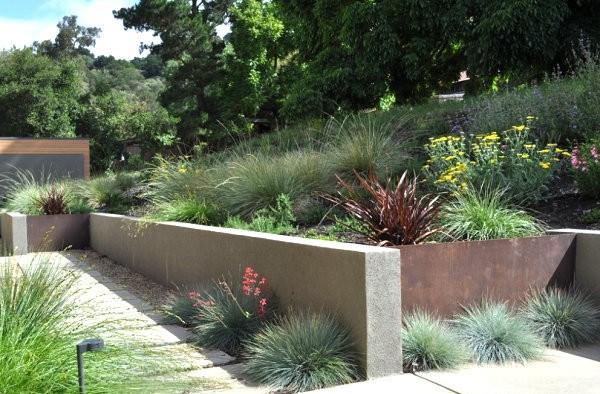 paisajismo con plantas de exterior rocas muro
