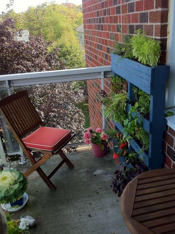 palet vertical jardín flores flores