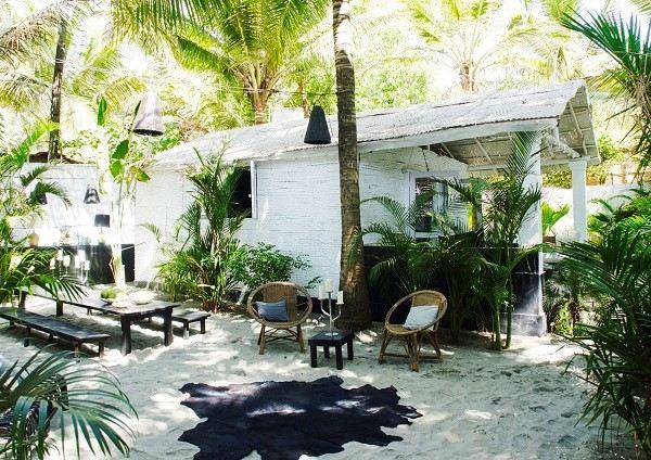 palmeras verano sala retiro muebles mimbre