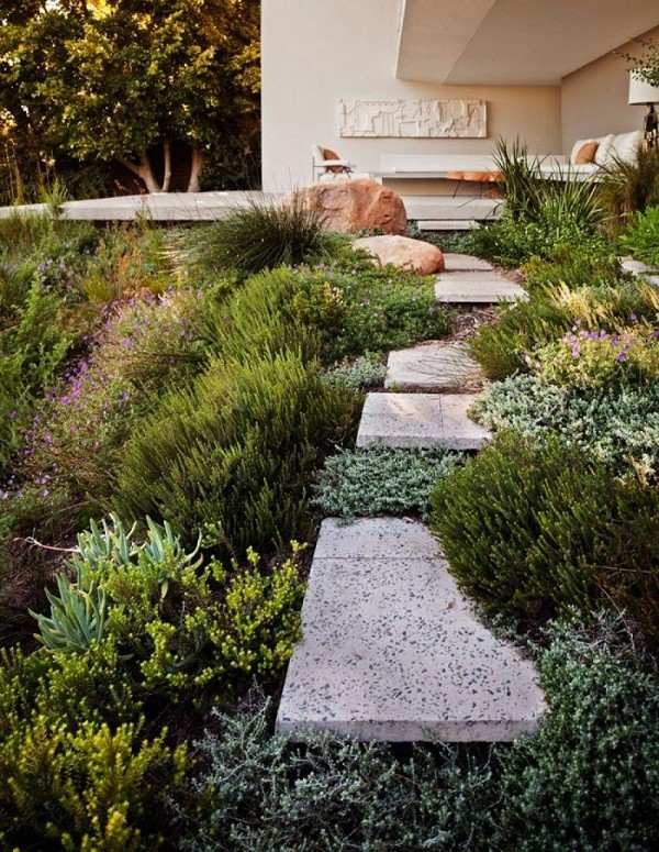 placas mármol sendero natural plantas