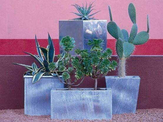 planta cactus tipos marmol macetas decorativos