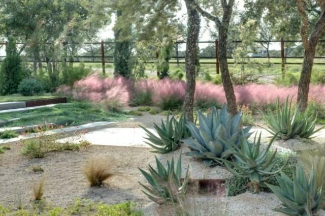 plantas de exterior azul agave sol