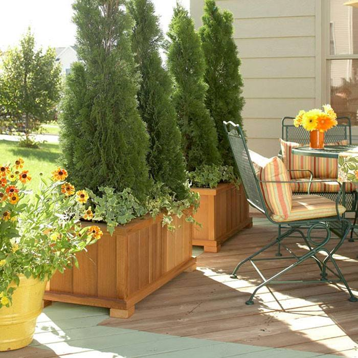 Plantas de exterior ideas para un jard n de ensue o for Easy terrazas chile