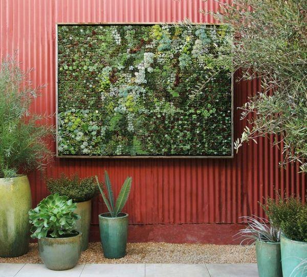 plantas interior colgante macetas muro grava