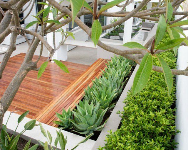plantas madera bancos decoración muebles