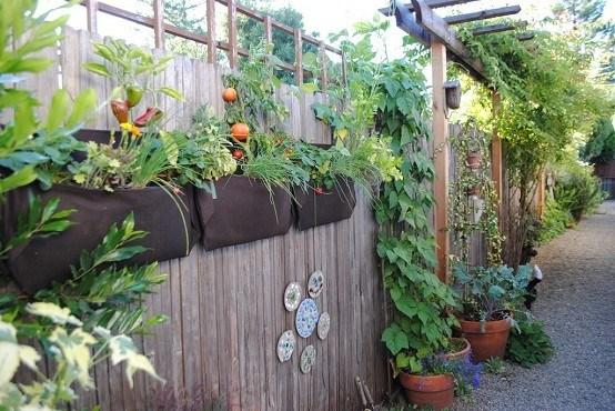 Jardines Y Sus Cuidados Durante Los Cambios De Estaciones