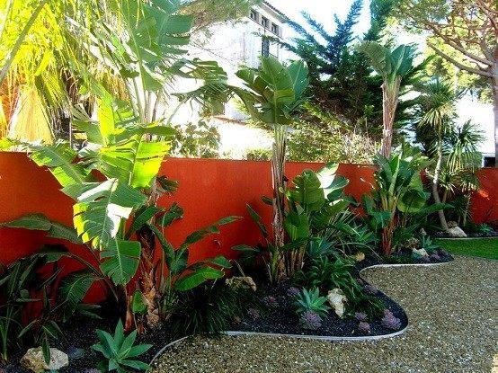 plantas tropicales exterior acuario jardin interior