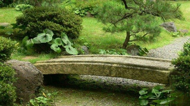 puente roca arboles flores zen meditacion