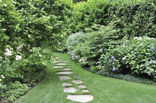 sendero natural baldosas desiguales plantas