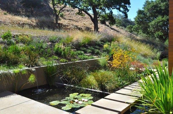 sendero baldosas estanque natural plantas