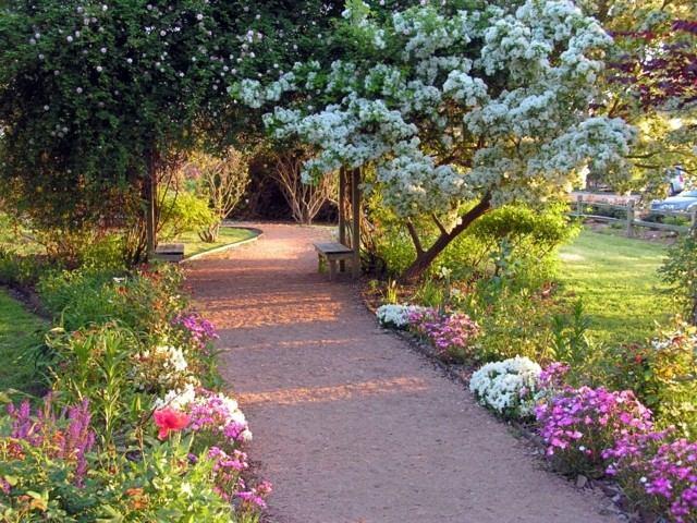 sendero camino bonito grava plantas