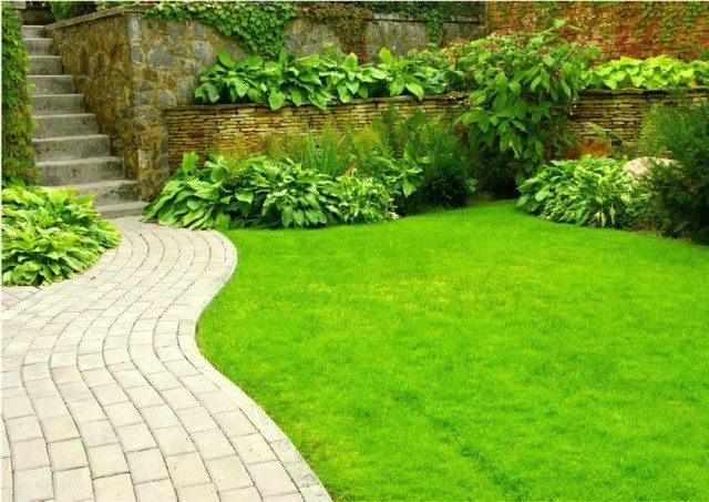 sendero losas escaleras piedra plantas