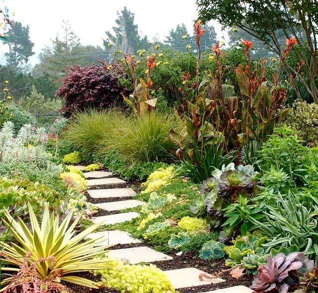 senderos vegetacion variada palmeras flores