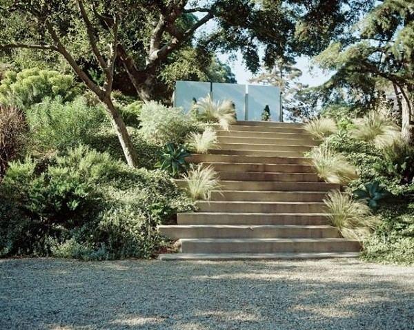 suculentas jardín plantas colina grava