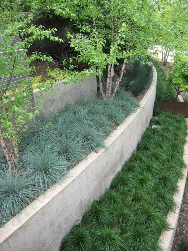 terrazas plantas hormigon hierba muro