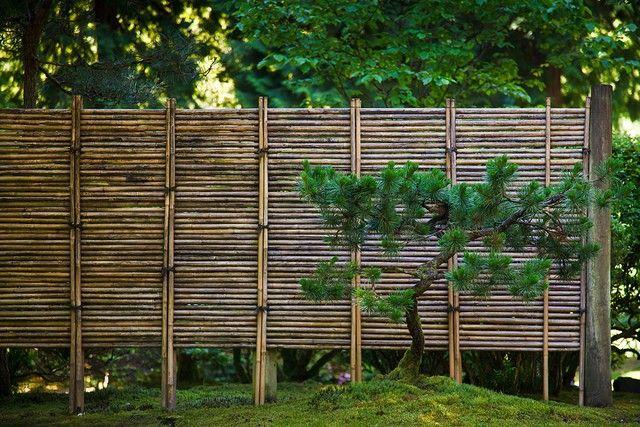 vallas de madera bambu pino jardin with vallas para jardines