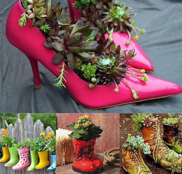 zapatos plantas flores suculentas manualidades jardineria