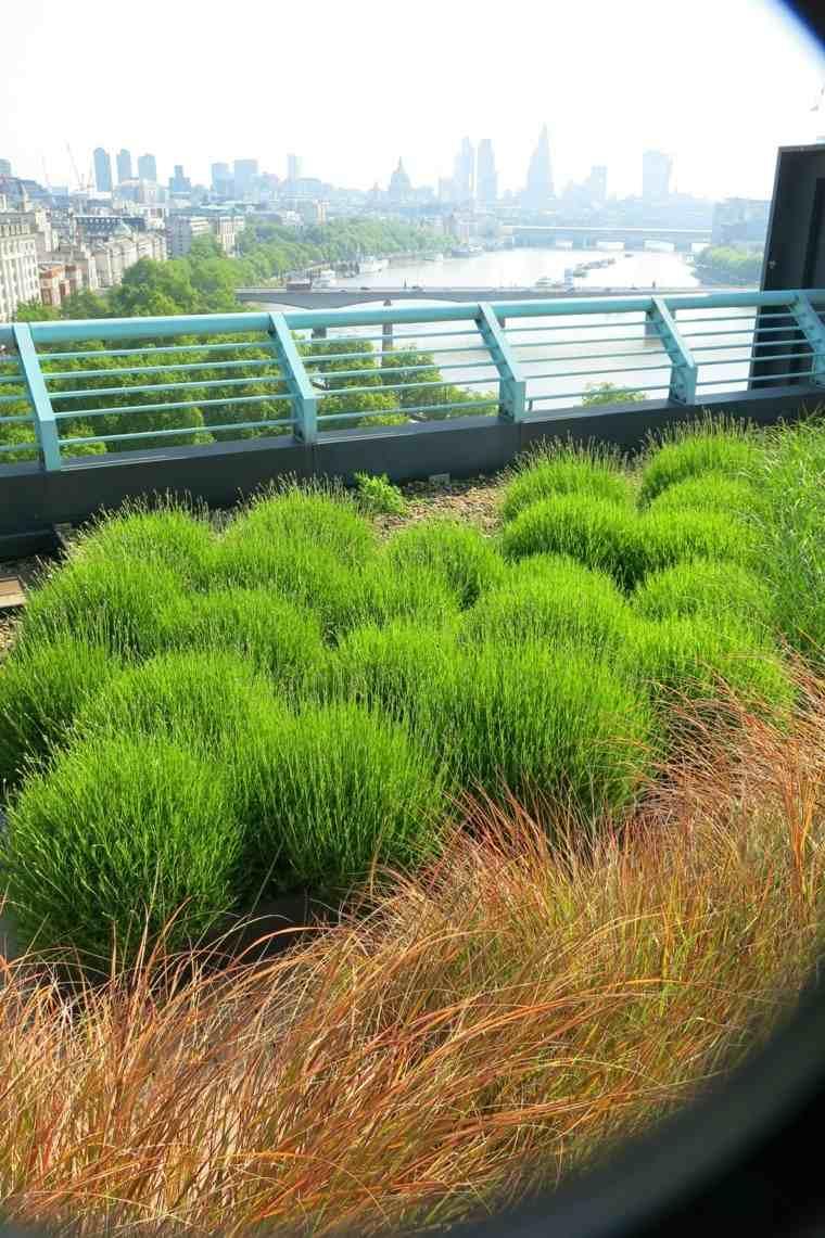 Matthwe-Bell-jardin-urbano-plantas-diseno