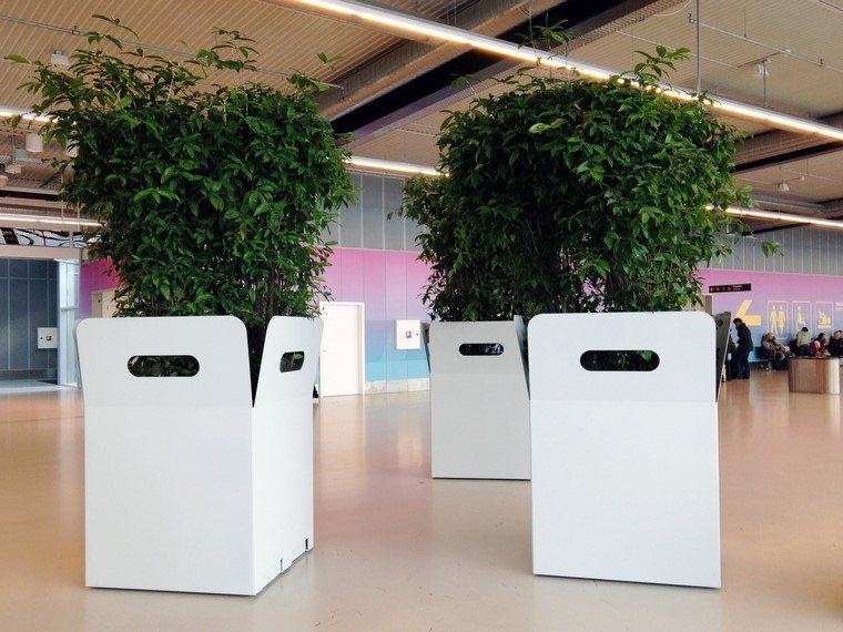 aeropuerto moderno plantas jardinera creativa