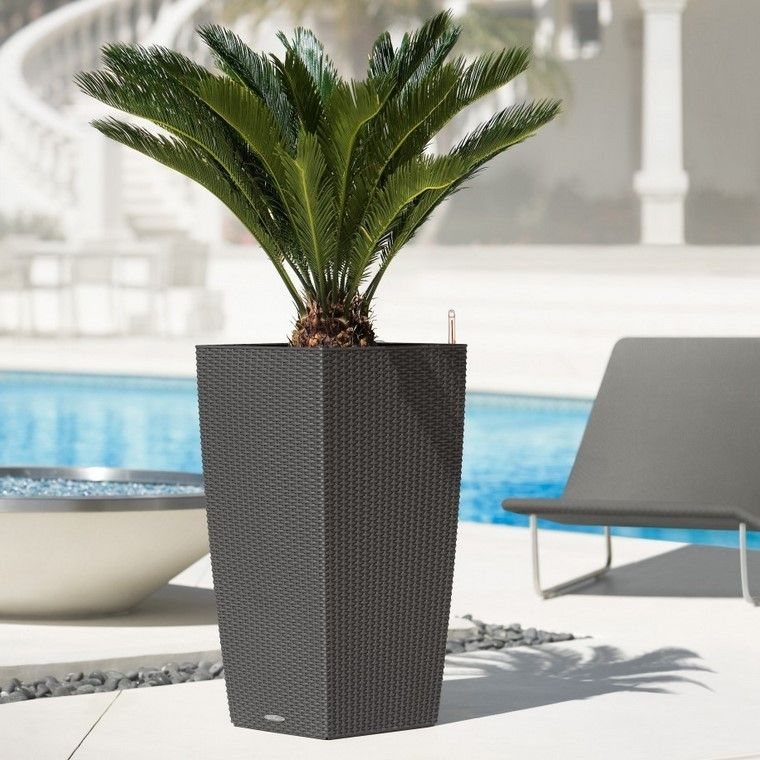 alto moderno exterior jardinera elegante - Jardineras Exterior