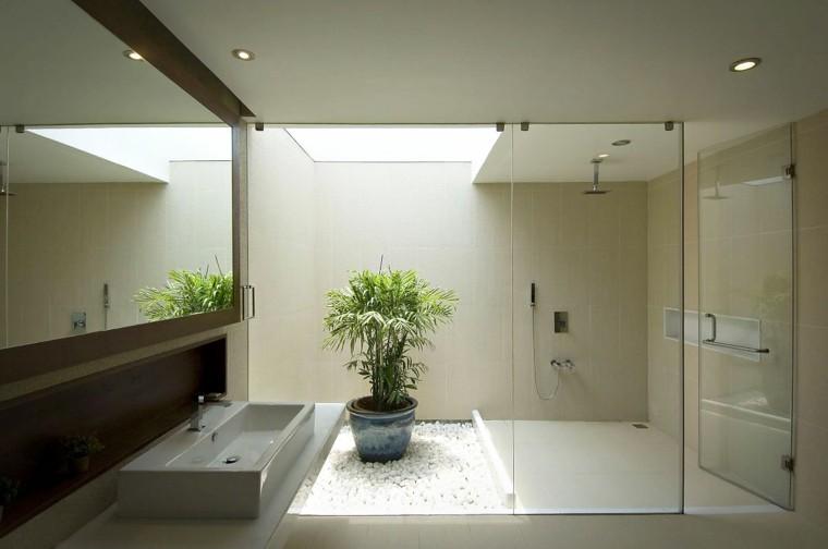 baño moderno maceta planta piedras