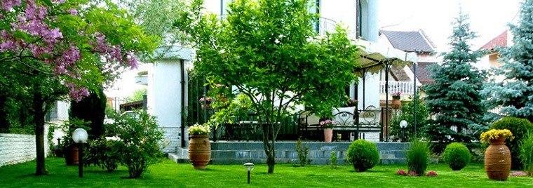 paisaje plantas jardin link