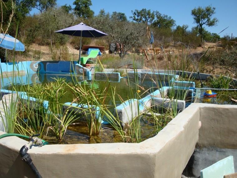 bio piscina filtro natural plantas