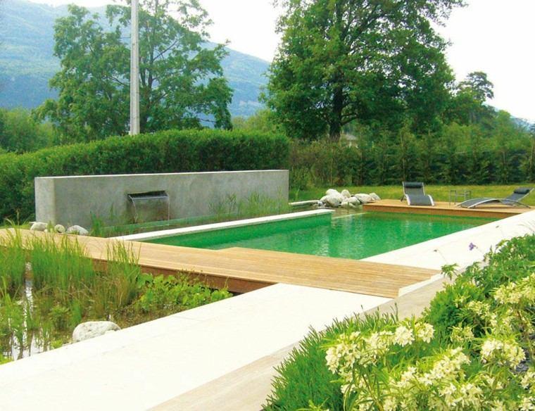 piscinas naturales y ecol gicas una elecci n saludable