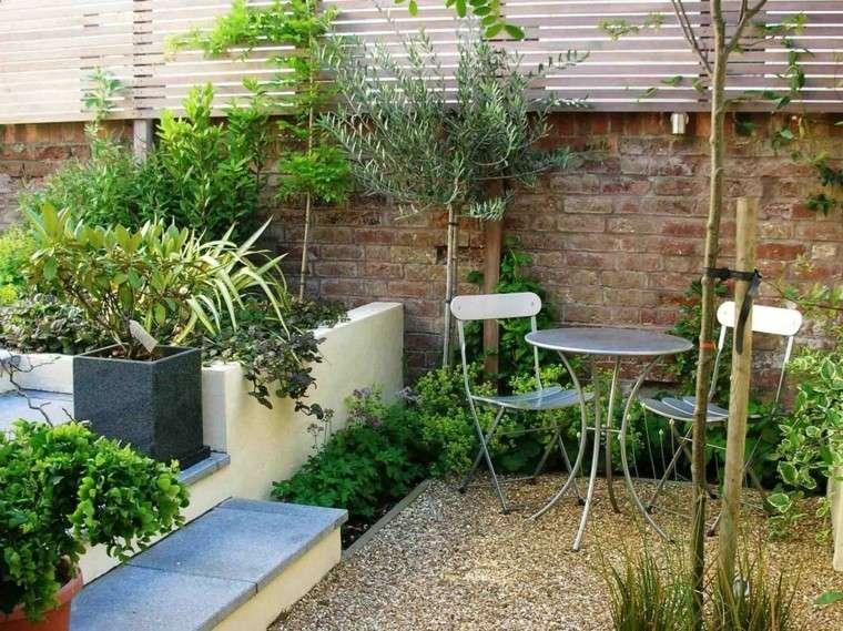 bonito patio jardin pequeño plantas
