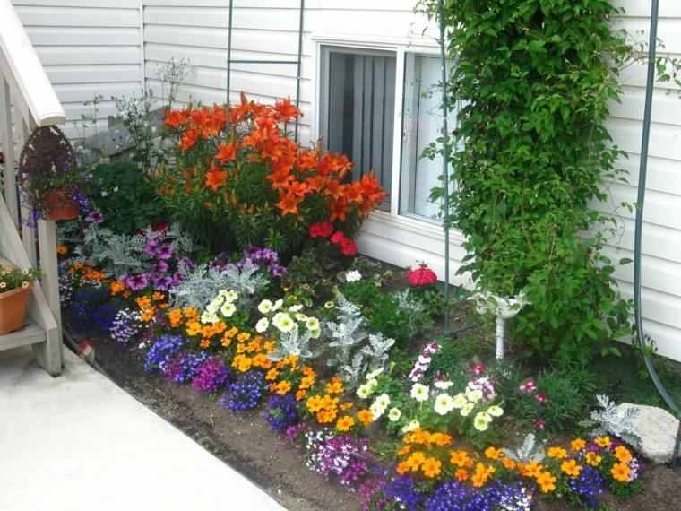 Flores bonitas que no deben faltar en el jard n - Plantas para jardin ...