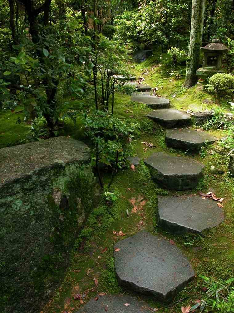 camino pendiente musgo plantas japones