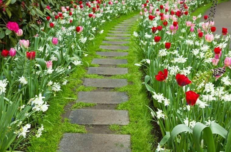 Flores bonitas que no deben faltar en el jard n - Tipos de jardines ...