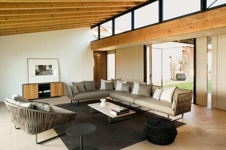 casa luces macetas madera techo sillones