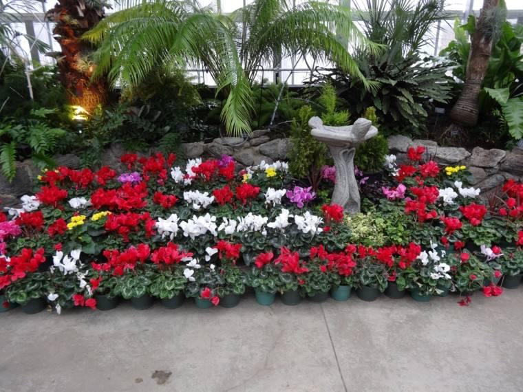 colores y diseño de jardines blanco macetas flores