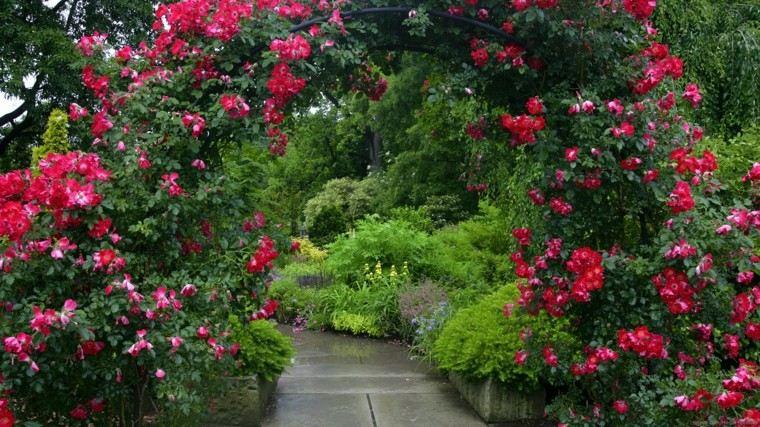 colores y diseño de jardines flores arco rojo