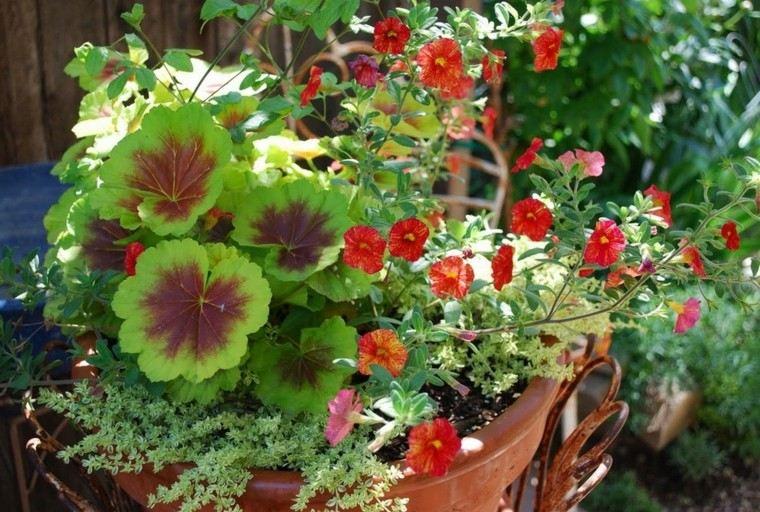 como diseñar un jardin flores llamativo diy