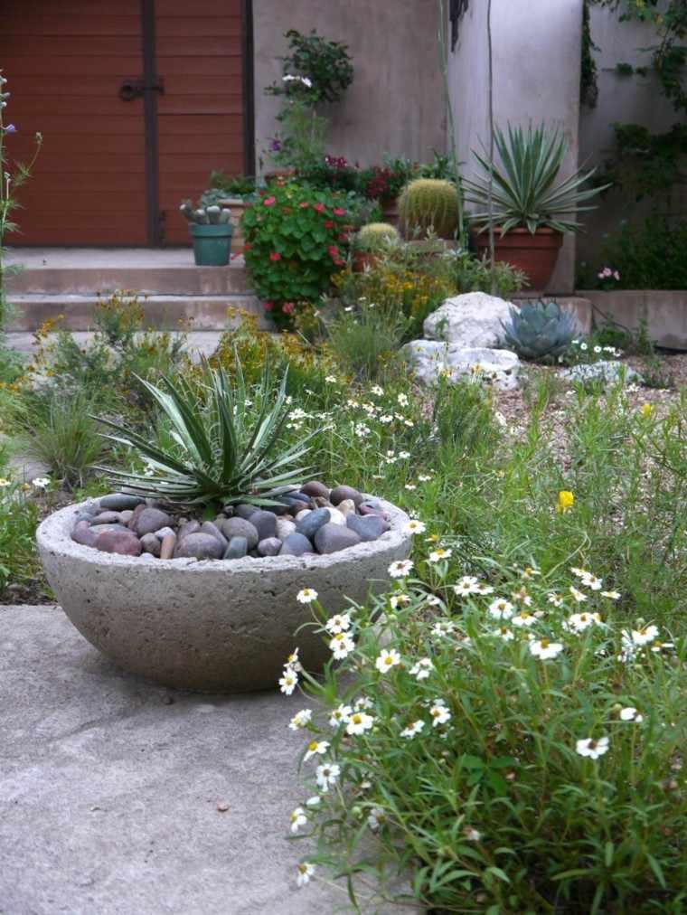 como diseñar un jardin flores maceta cactus